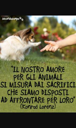 Renata Fergola - Google+