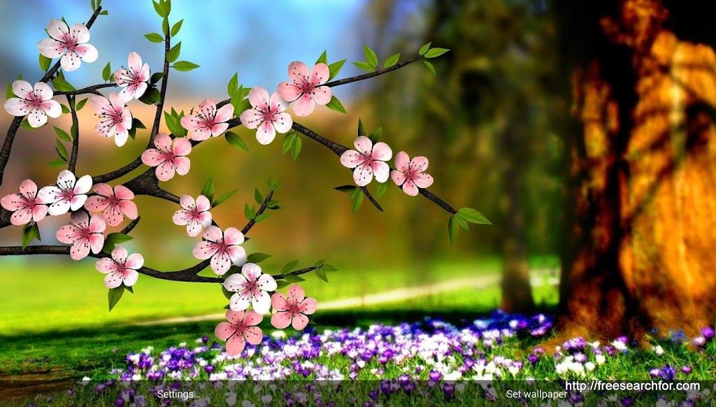 Desktop Wallpaper HD 3D Full Screen Flowers 2