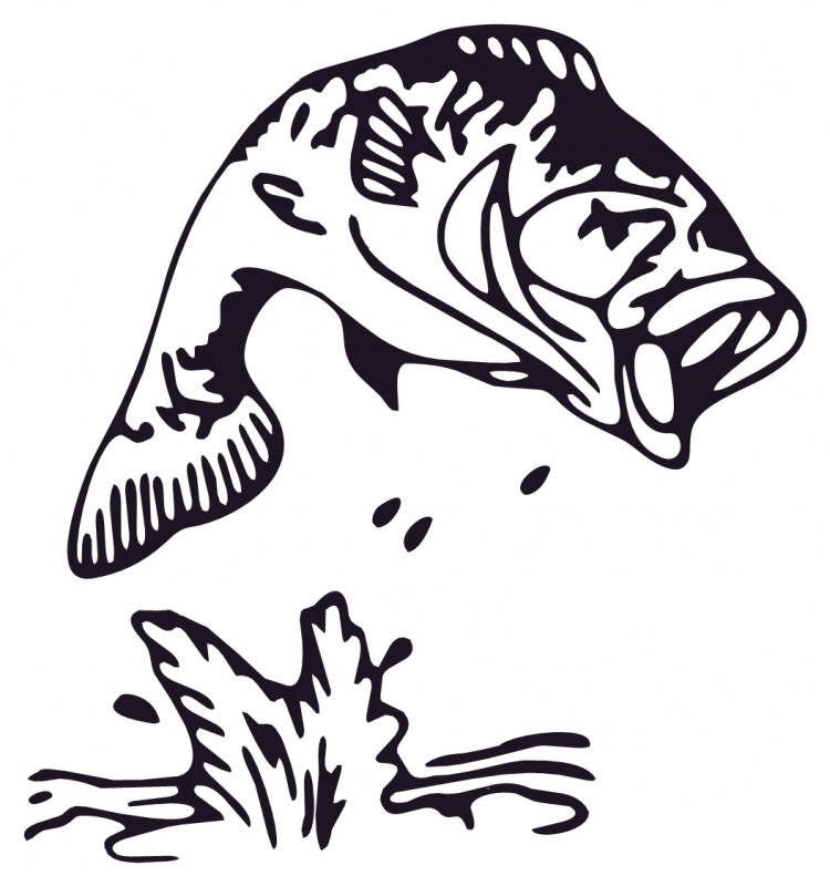 Bass Fish - ClipArt Best | Fish outline, Fishing svg