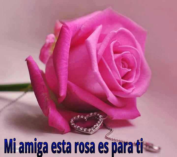 Amiga Esta Rosa Es Para Ti Rosas Flores Y Frases De Amor