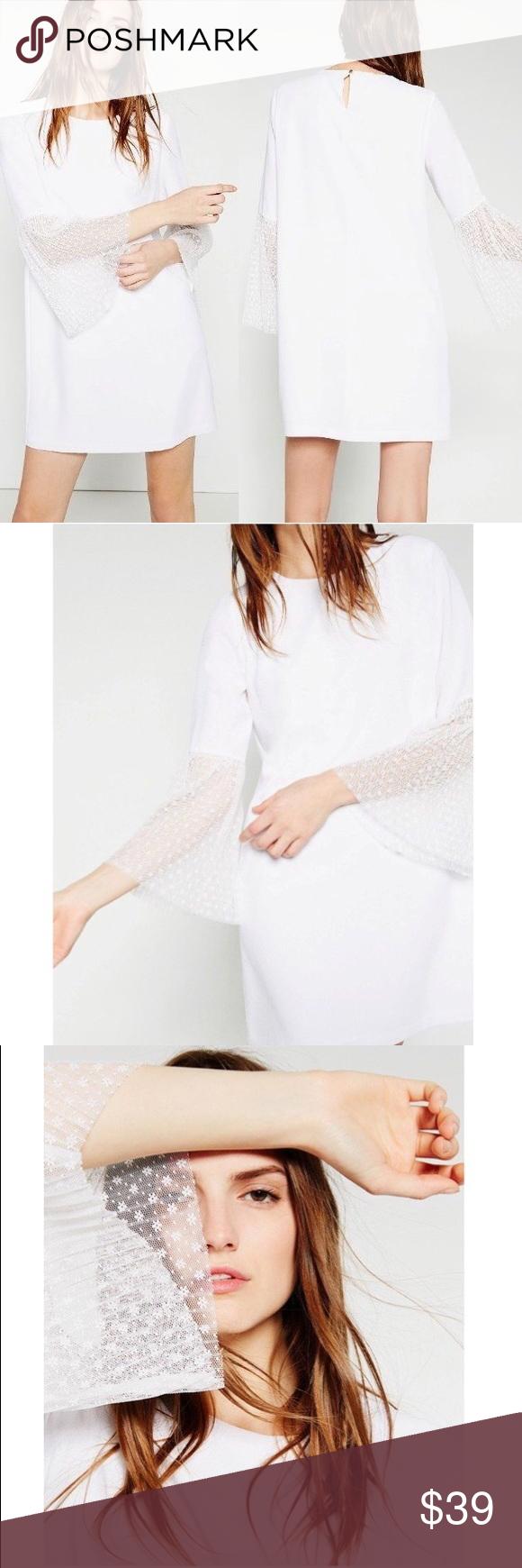 White lace dress zara  ZARA Lace Bell Trumpet Sleeve Shift Dress  My Posh Picks  Pinterest
