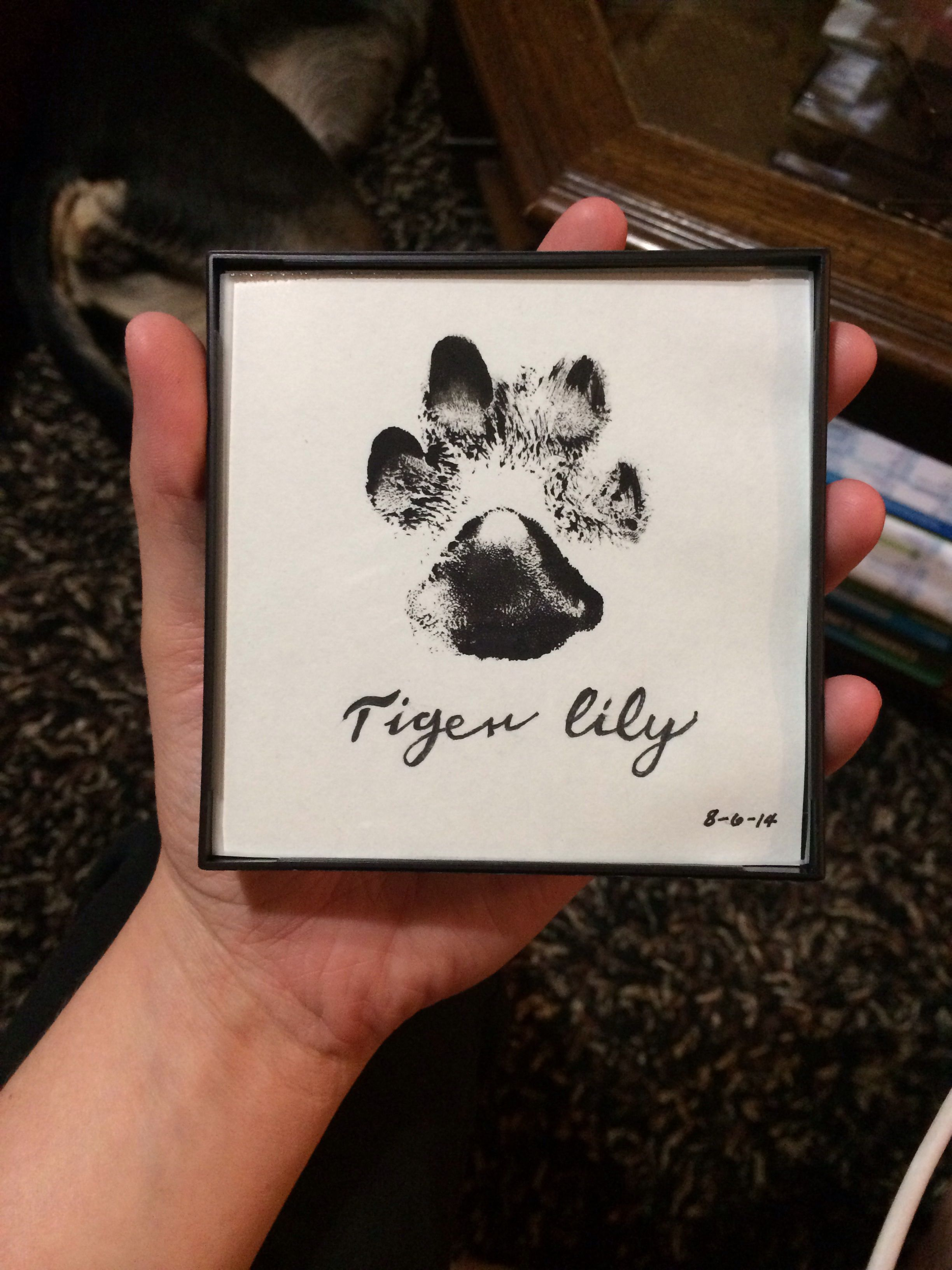 Diy Dog Paw Print With Name In Dollar Frame Dog Pawprint Frame