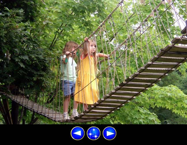 Backyard Rope Bridge rope and wood suspension bridge a .pdf with instructions! might want