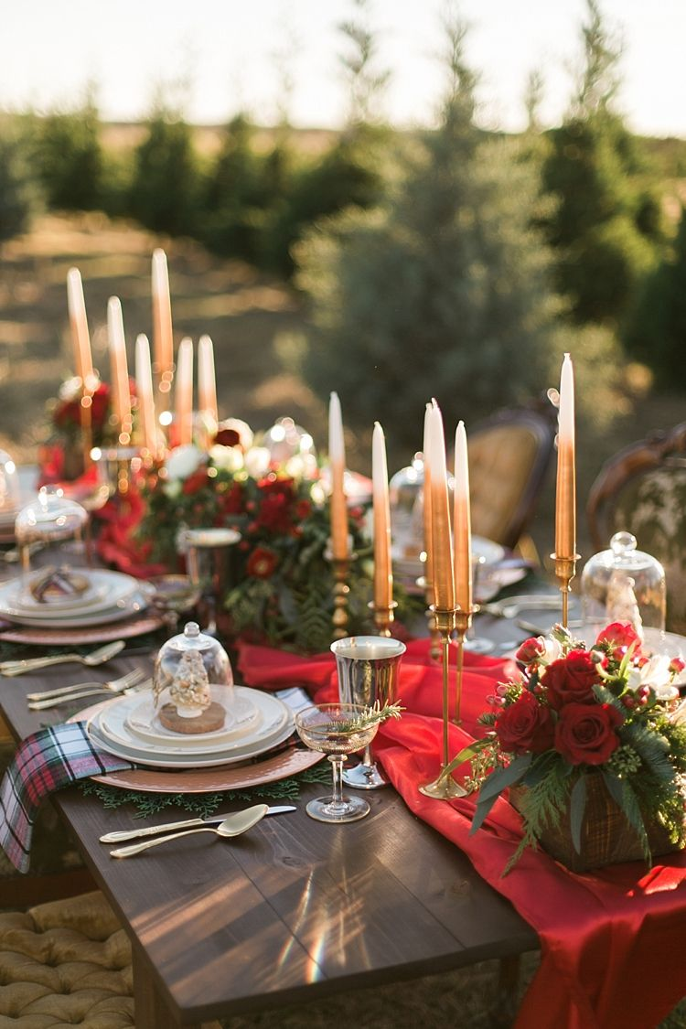 Christmas Tree Farm Weddings.Christmas Tree Farm Wedding Ideas Wedding Ideas