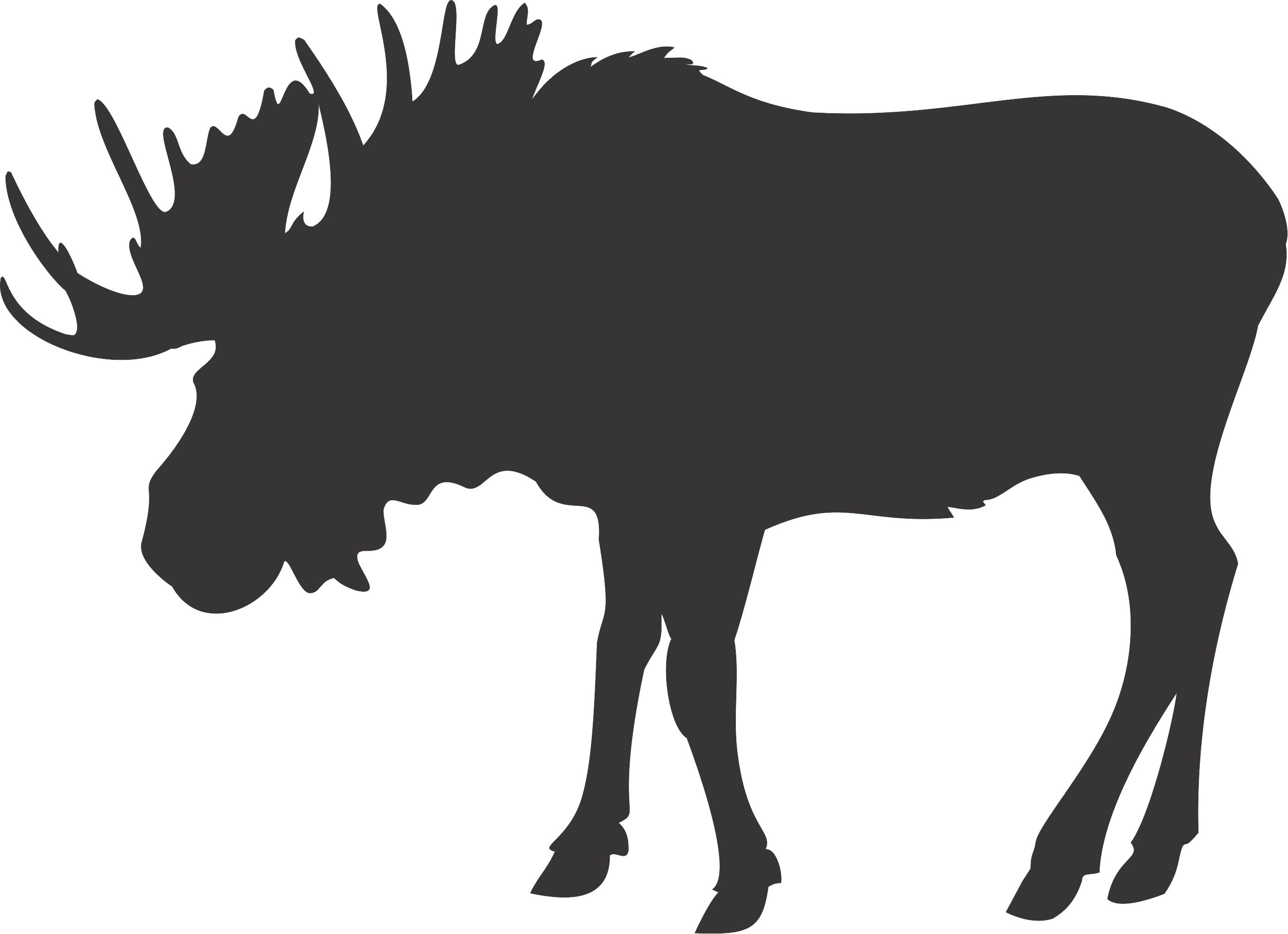 free moose clipart pictures clipartix cartoon moose tattoos
