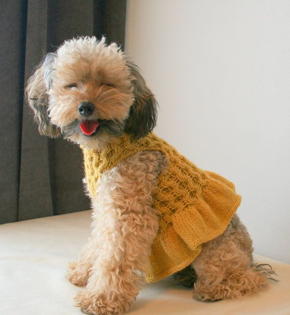 yellow dog dress poodle dress chihuahua vest pet clothing hand knit dog clothes by. Black Bedroom Furniture Sets. Home Design Ideas
