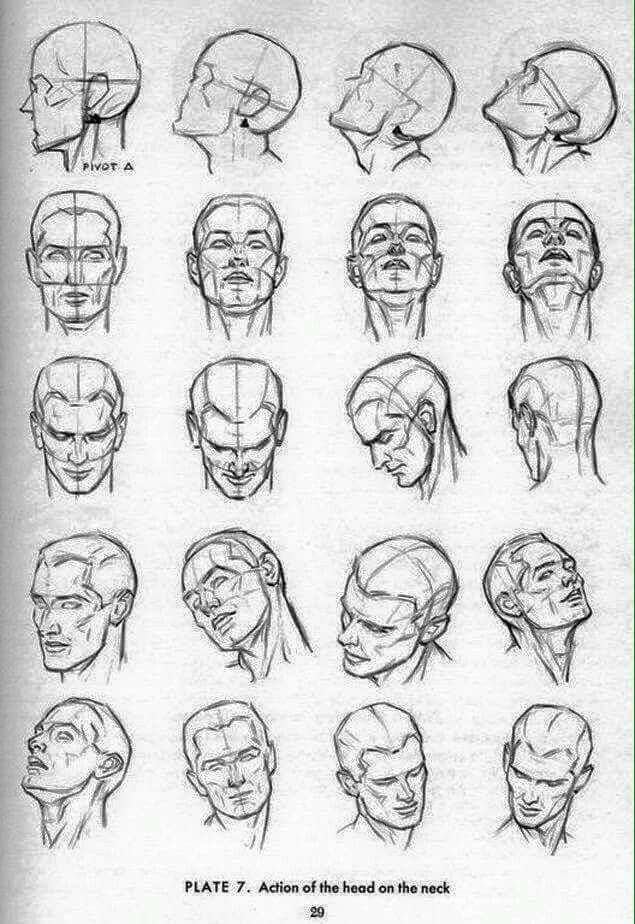 Pin By Diego Castillo On Facial Reference Drawing The Human Head Sketches Drawing Heads