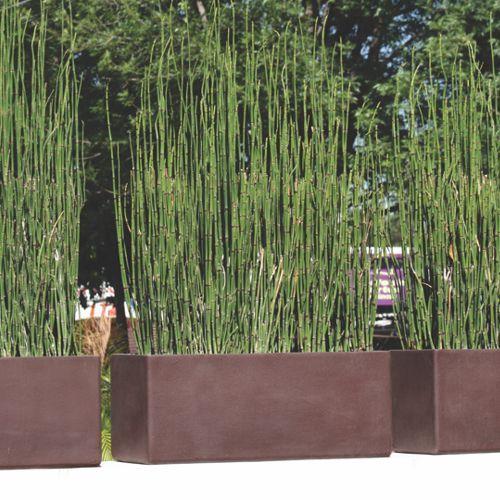 Jardineras chocolate con cola de caballo casa muro exterior pinterest colas de caballo - Jardineras de fibra de vidrio ...