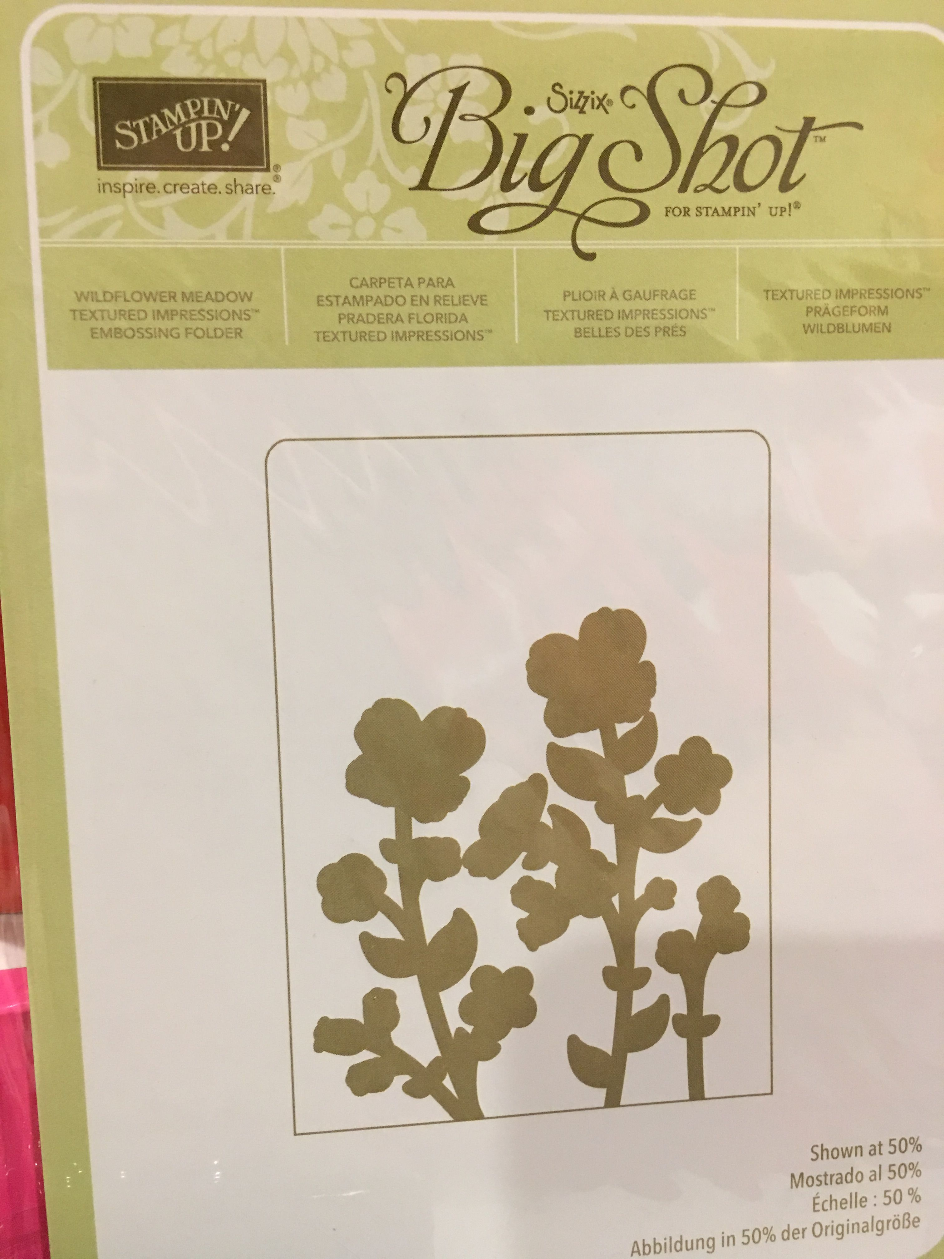 Stampin/' Up! For Use with the Big Shot and Other Die Cutting Machines Wildflower Meadow Textured Impressions Embossing Folder