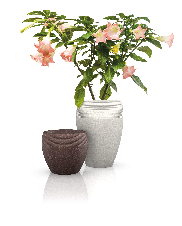 Donica Scheurich Lineo High 65 Piaskowa Scheurich Markowedonice Pl Doniczki Do Domu Ogrodu I Na Taras Home Decor Decor Vase