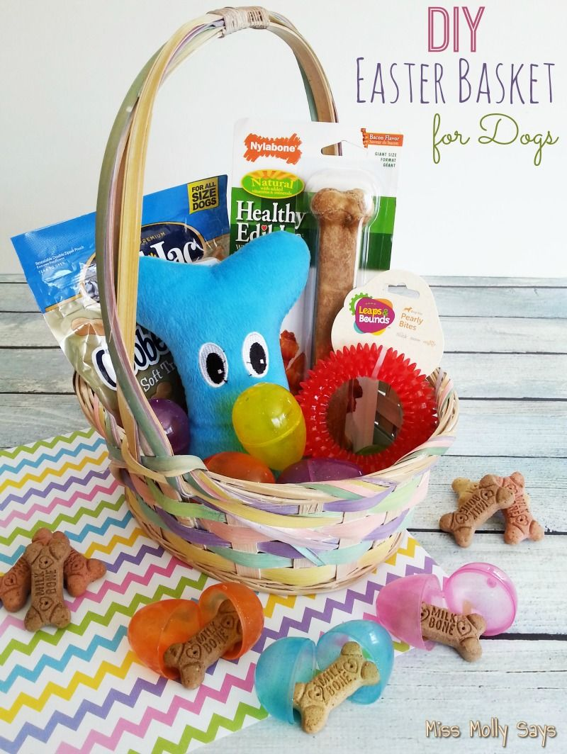 Diy easter basket for dogs easter baskets easter and dog diy easter basket for dogs negle Image collections