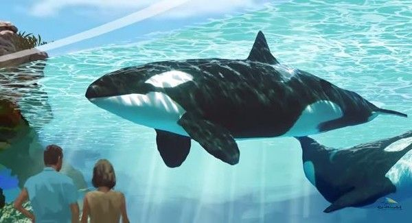SeaWorld's About To Get Its Biggest Win Yet