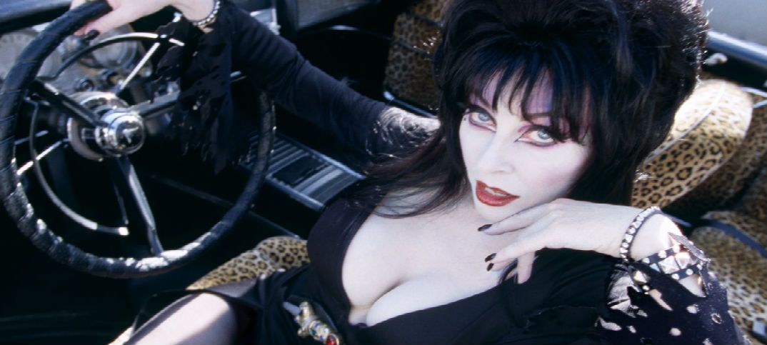 Too Macabre The Elvira Collector S Guide Cassandra Peterson