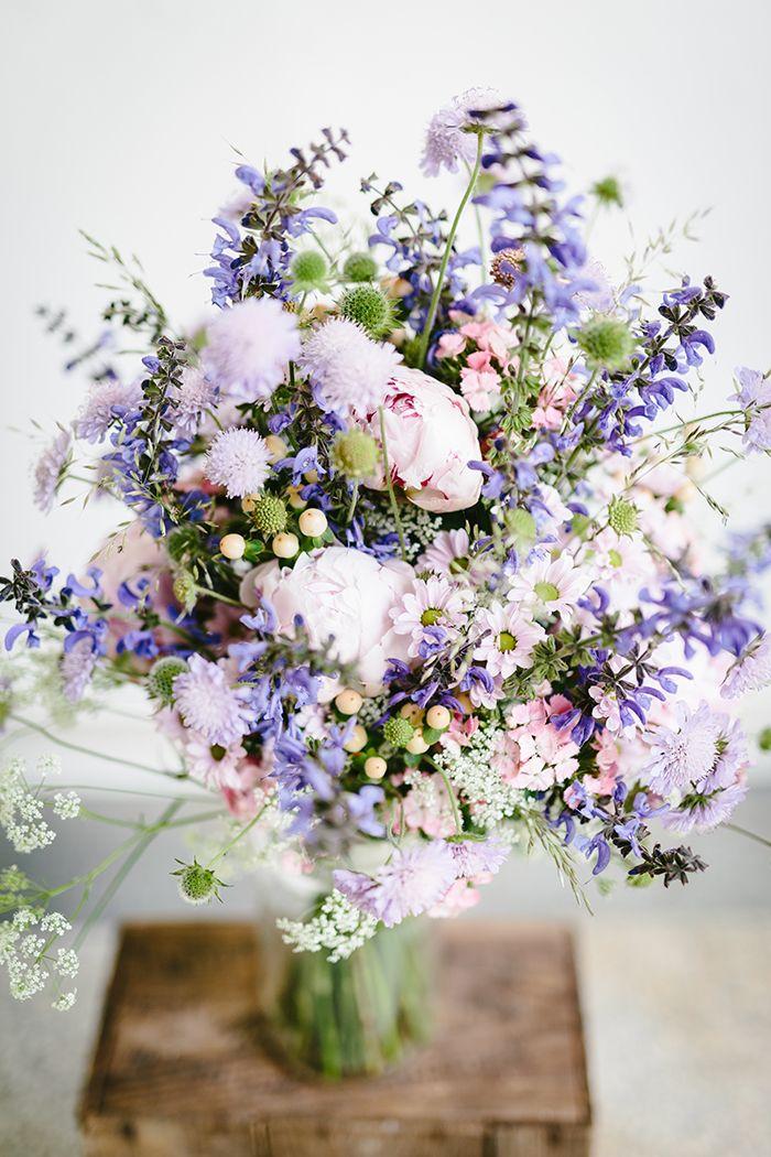 Blume des Monats Juli Scabiose  PURPLE WEDDING