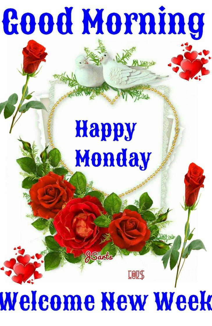 Good morning happy monday pinterest good morning morning good morning happy monday pinterest good morning morning greeting and morning qoutes m4hsunfo