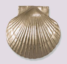 Scallop Shell Door Knocker Beach Decor | Nautical Decor | Tropical Decor |  Coastal Decor