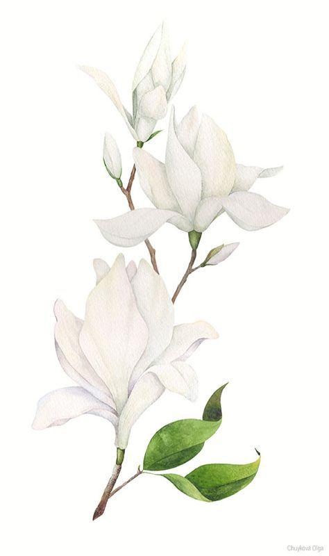 Акварельные цветы для нежного настроения