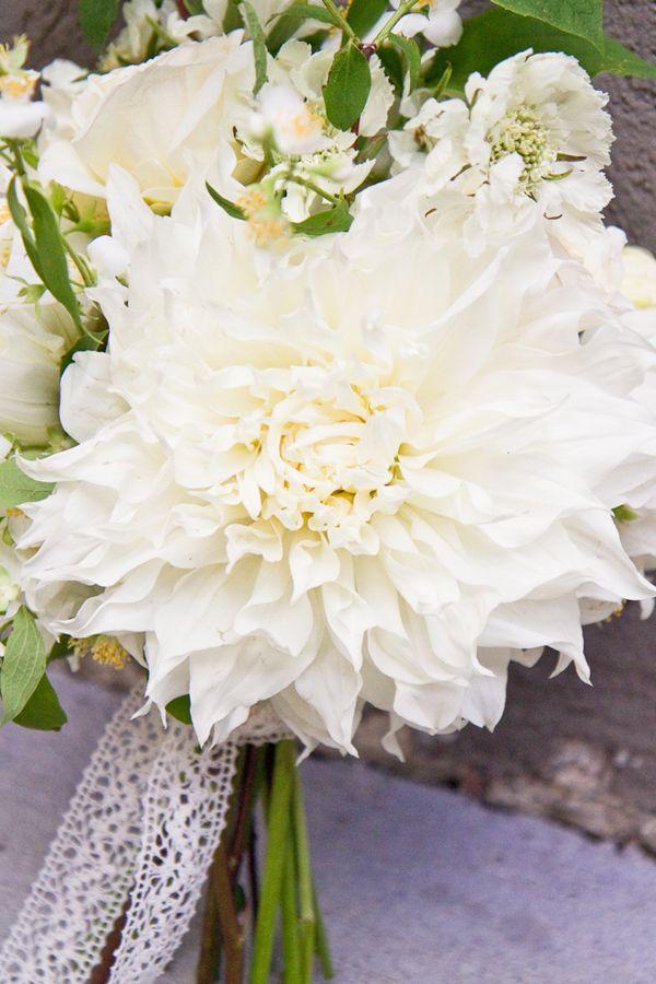 Dahlias Wedding Flowers Bouquets dye coral | Wedding favs ...