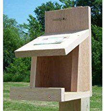 Free Robin, Phoebe Bird House Plans - Nesting Shelf   Bird ...