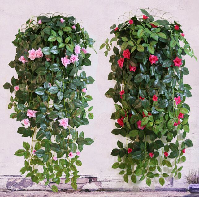 Compare Prices On Hanging Plant Flowers Online Shopping Buy Low Price Hanging Plant Flowers At Factory Price Aliexpre Hanging Plants Planting Flowers Plants