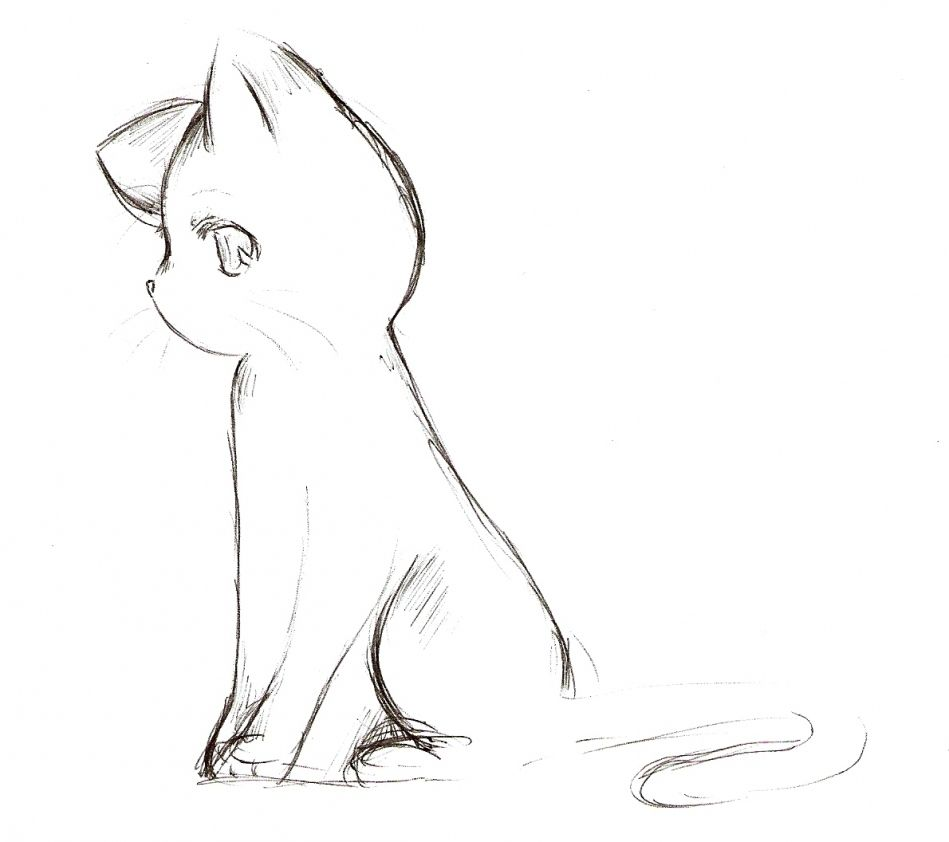 Cat Drawing Side View Anime Cat Sketch By How To Draw Pinterest Cats Cute Anime Cat Cat Sketch Cat Drawing