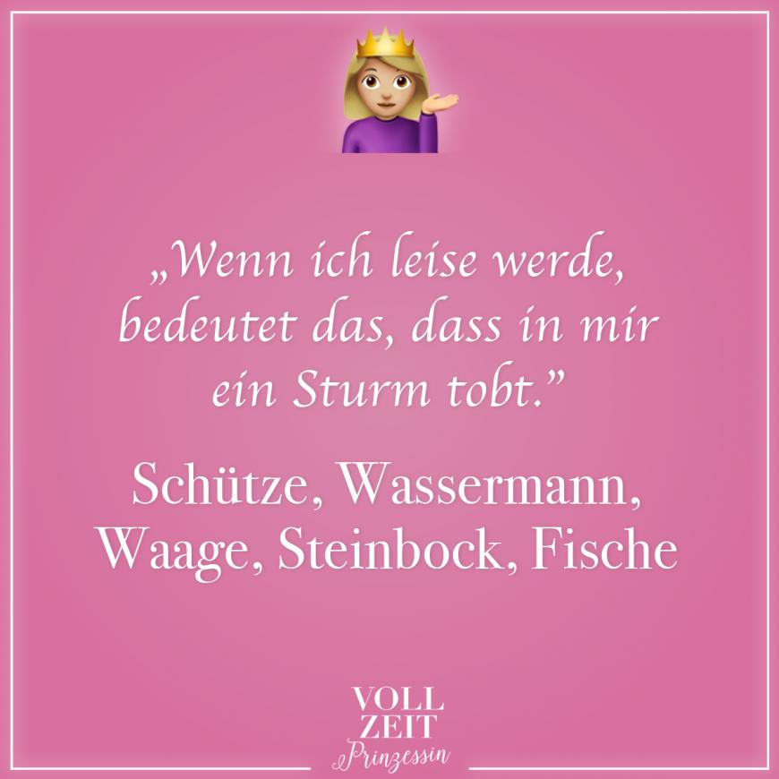 Partnerhoroskop schütze wassermann und Wassermann &