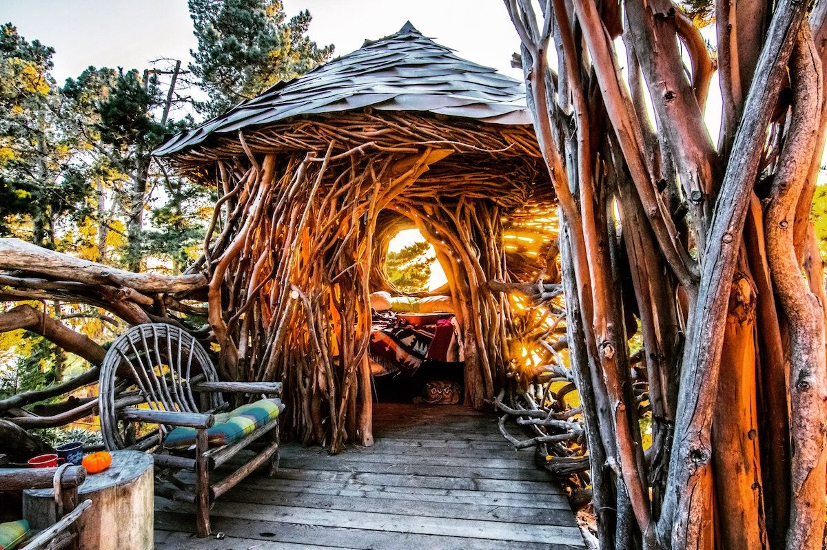 Campsite with Human Nest or The Twig Hut - Treebones Resort