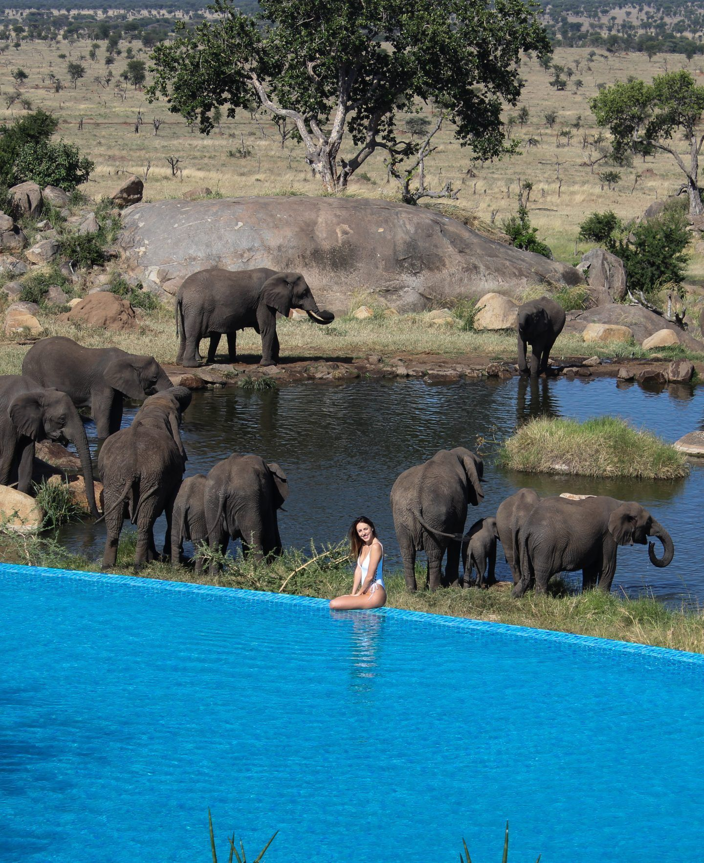 Serengeti Tanzania Safari Lodge Four Seasons Safari Lodge Experience Thrilling Serengeti Game Drives And The African Vacation Tanzania Travel Tanzania Safari