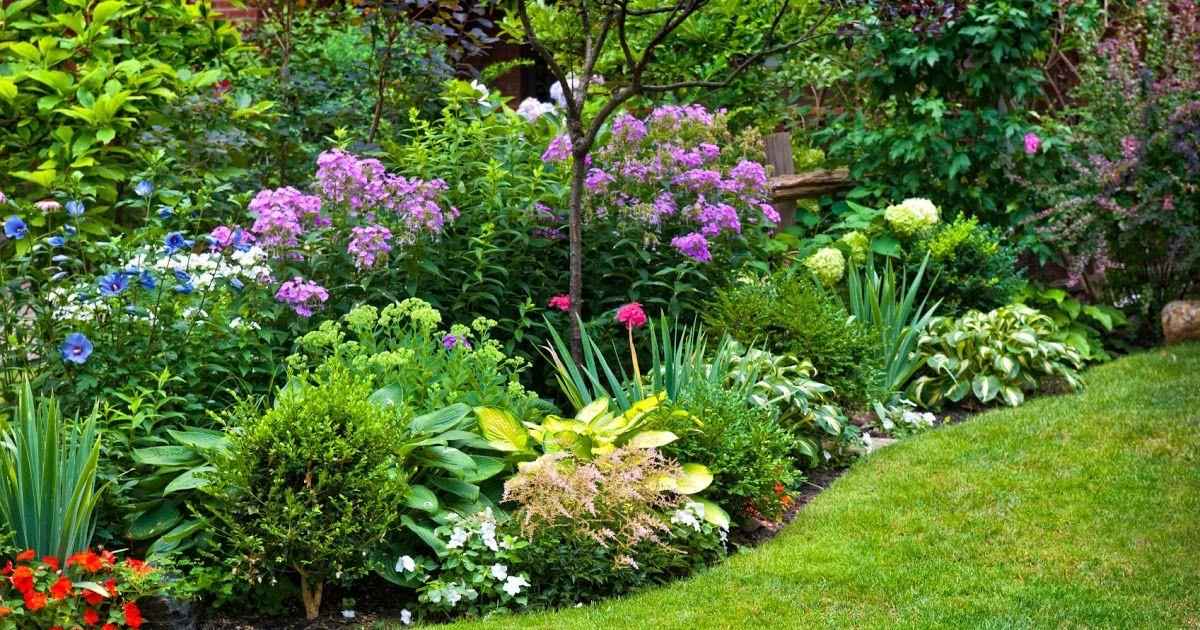 Image Result For Lawn Garden Center Image Result For Lawn Garden