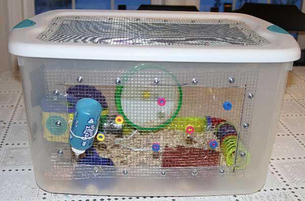 Account Suspended Hedgehog Cage Hamster Diy Cage Hedgehog Pet