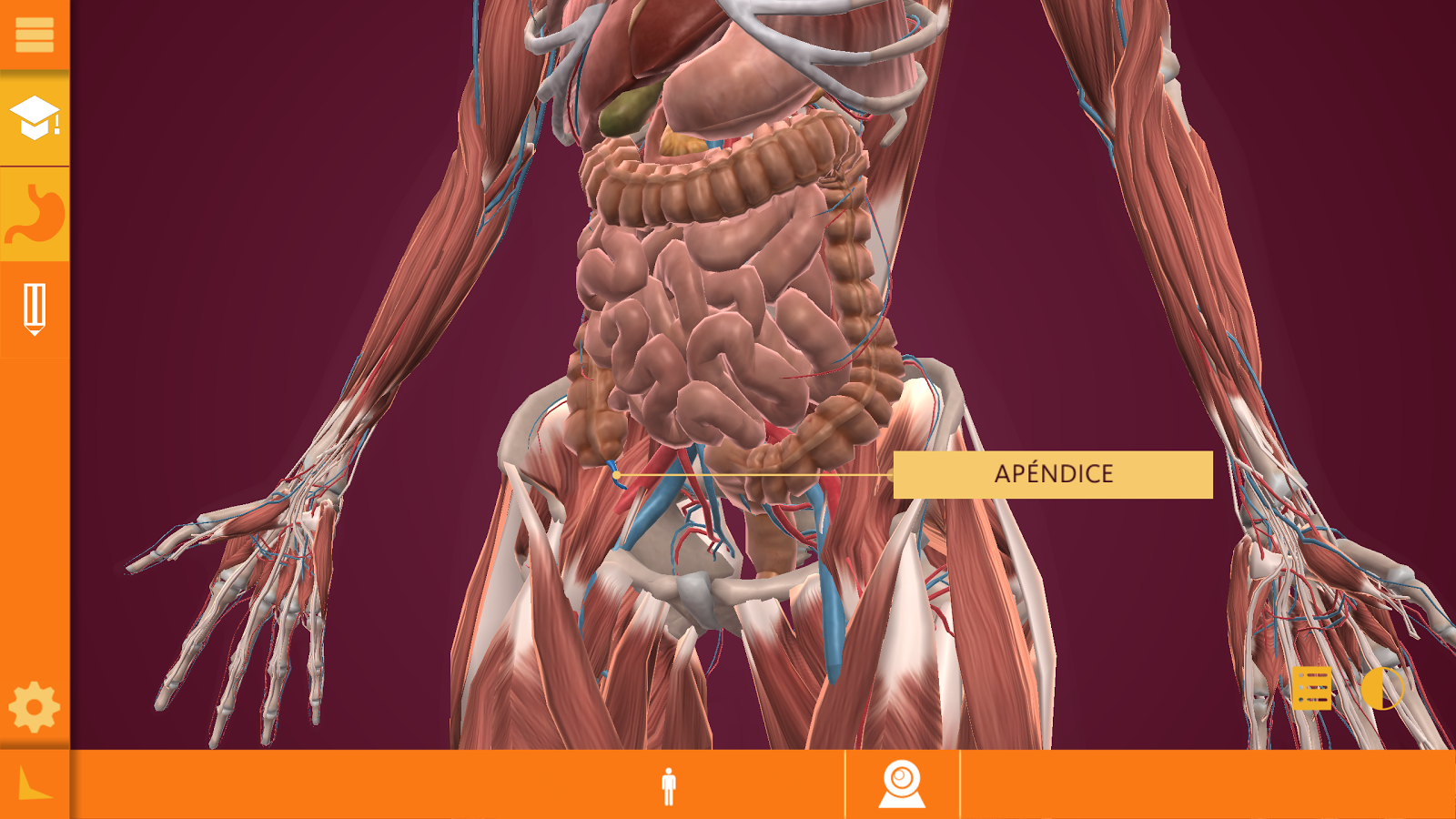 Arloon Anatomy #app #android | ra | Pinterest