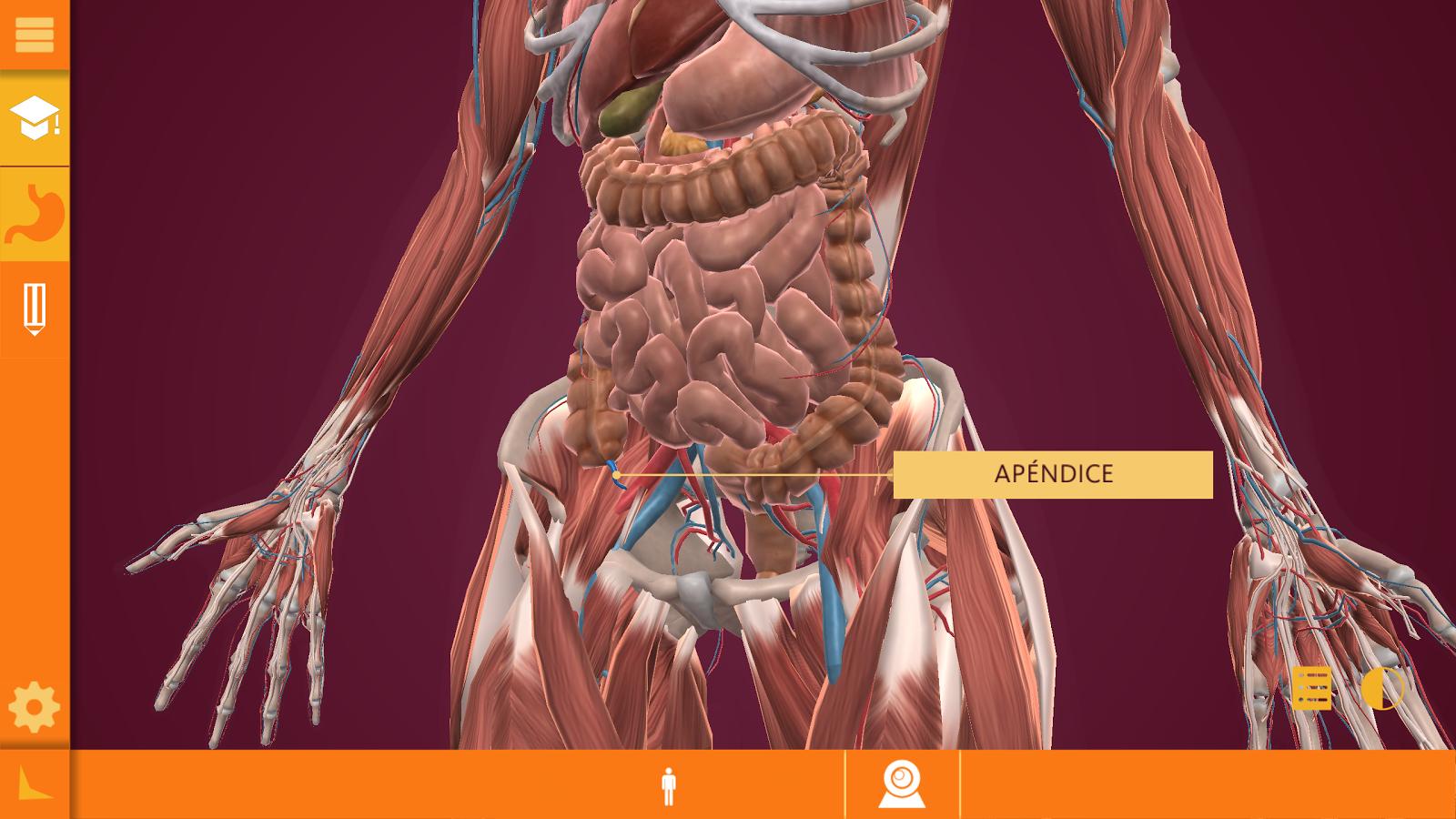 Arloon Anatomy #app #android | Android Ciencias | Pinterest
