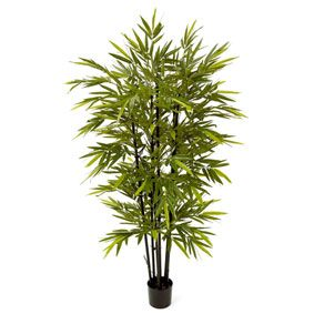 The Artificial Bamboo Tree is surprisingly realistic in appearance and is great for adding a touch of natural elegance and beauty to any interior space.    The sense of oriental charm evoked by bamboo plants and trees is very chic at the moment making the Artificial Bamboo Tree perfect for any modern, trendy household.