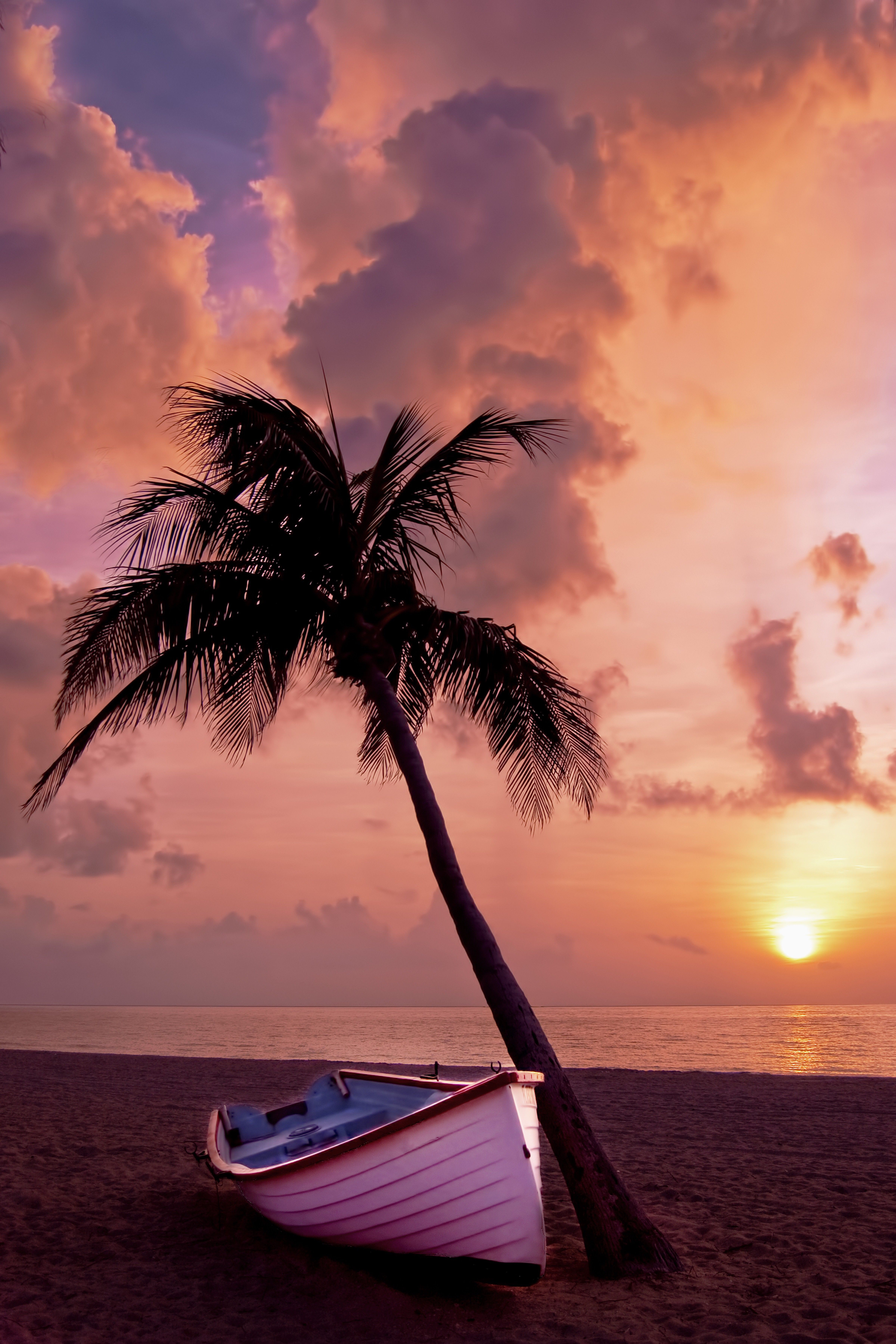 Palm Tree Iphone Wallpaper Beautiful Sunset Beautiful Beaches Sunset