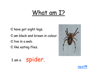 What am I minibeasts ppt   Eric Carle   Minibeasts eyfs, Insect
