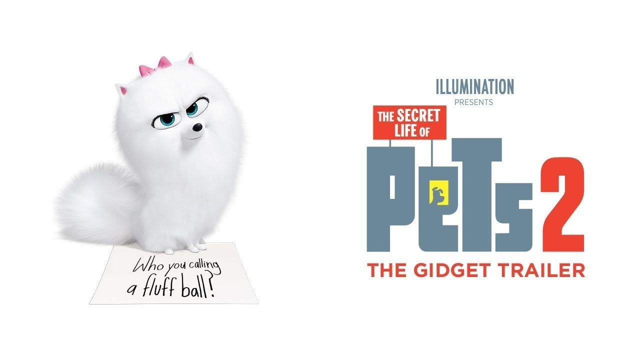 Who You Calling A Fluff Ball Watch The Gidget Trailer For Thesecretlifeofpets2 Now In Theaters Summer 2019 Secret Life Of Pets Secret Life Pets