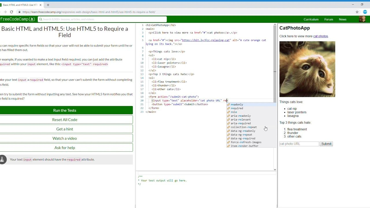 21 27 Basic Html And Html5 Use Html5 To Require A Field Learn Freecod Free Web Design Html5 Basic
