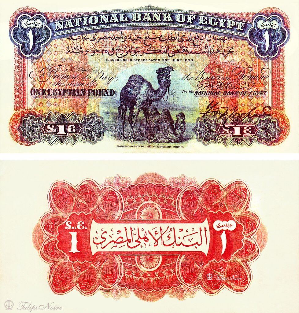 1 Pound First One Date Of Issue January 5 1899 Egyptian Pound Banknotes Design Bank Notes