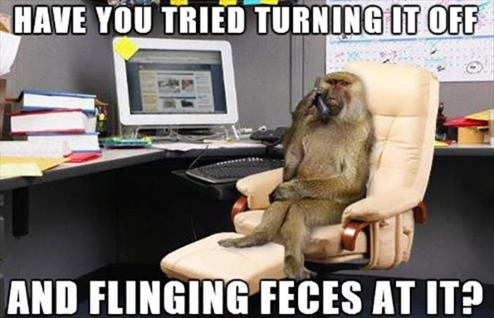 Funny Animal Pictures Of The Day 28 Pics Work Jokes Work Humor Work Memes