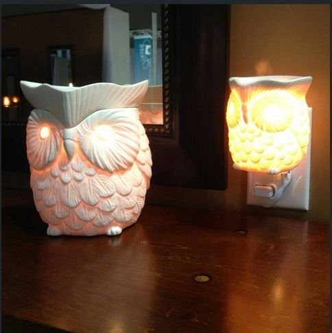Whoot plug-in or full size  www.tratkiewicz.scentsy.us #scentsy #candles #wickless