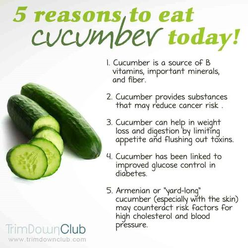 Cucumber Facts Trim Down Club Review Watermelon Nutrition Facts Cucumber Trim Down Club