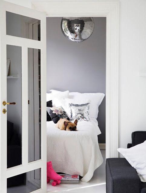 Grünerløkka, Oslo, Norway, interior, mirror ball, disco ball, french bulldog