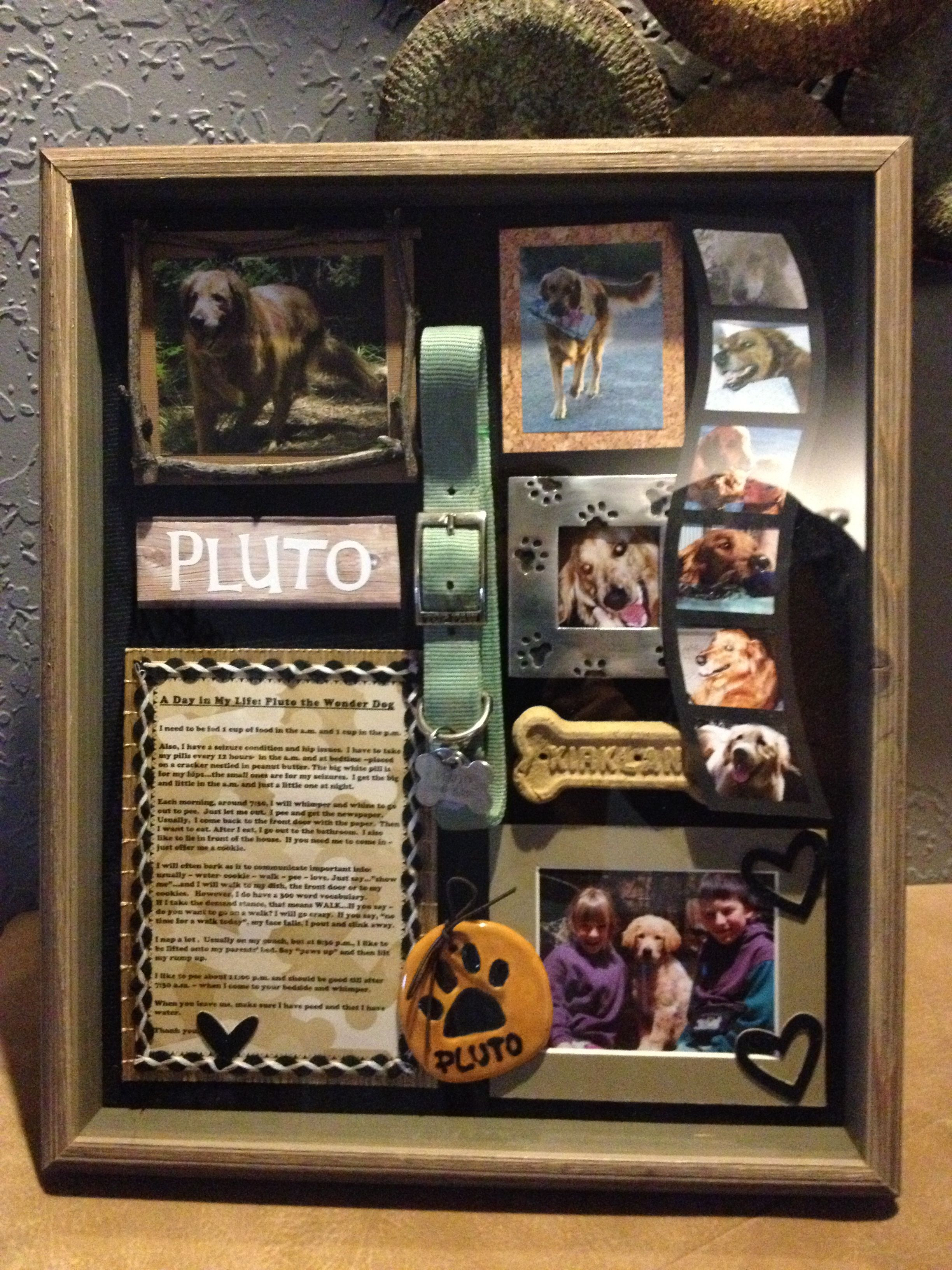 Our Blessed Pluto Shadow Box For Pluto Pinterest