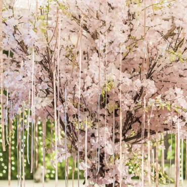 Cherry Blossom Tree Rental For Weddings Events Los Angeles Dreams In Detail Blossom Trees Cherry Blossom Tree Blossom
