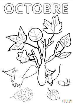 Le mois d 39 octobre avec lili la souris maternelle - Coloriage ps maternelle ...