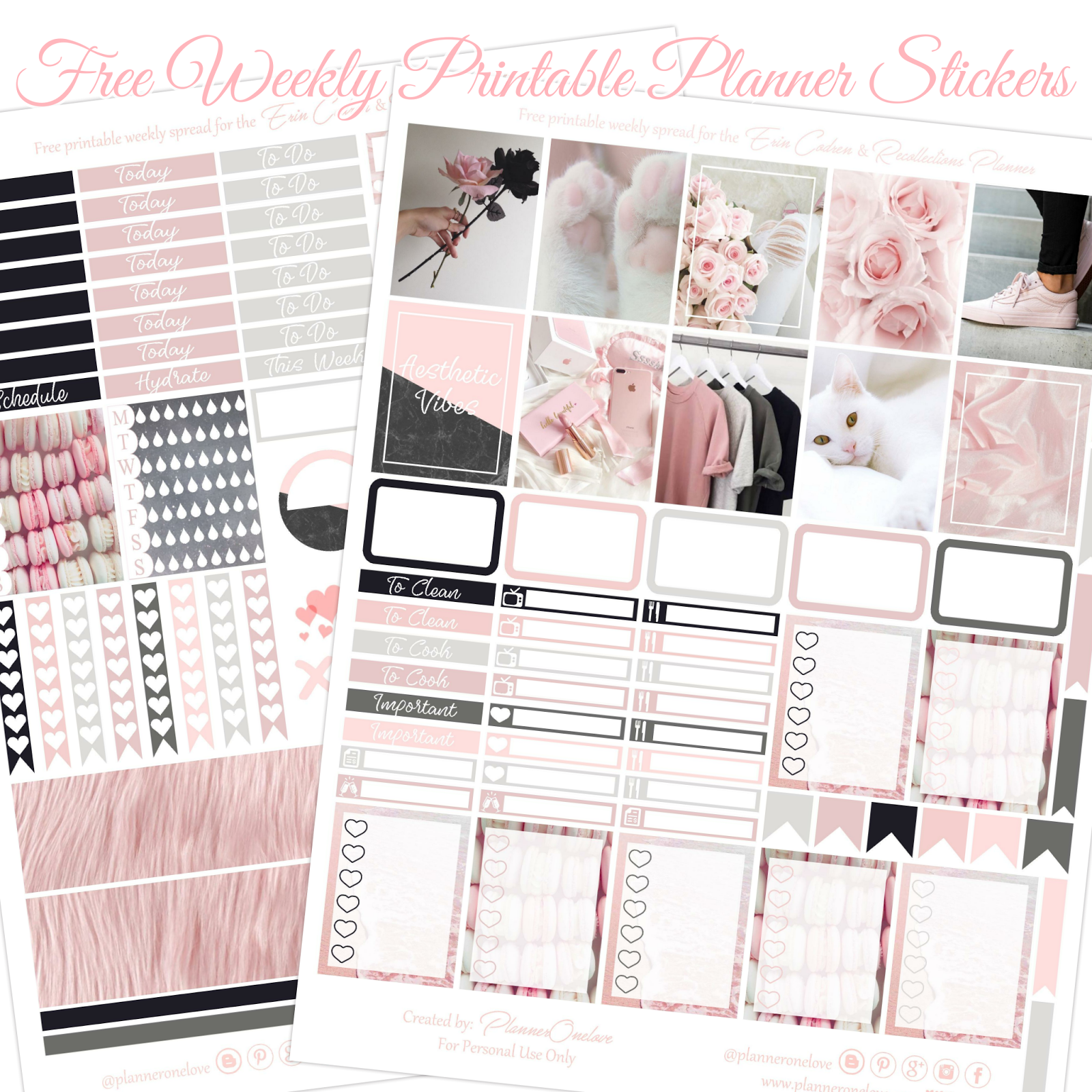 Free Aesthetic Vibes Printable With Silhouette Studio Cut ...