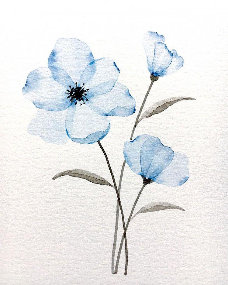 30 Watercolor Flower Painting Ideas for Beginners - Beautiful Dawn Designs