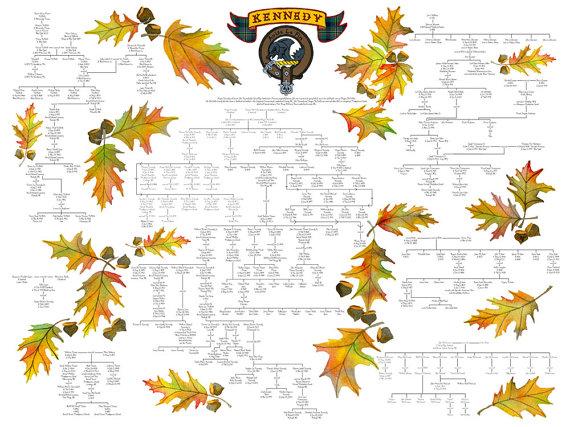 large family tree geneology artwork charts family trees