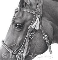 Mary Ross Buchholz does some of the greatest pencil drawings of horses that I have ever seen!!!