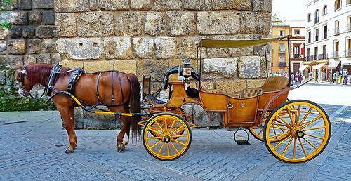 Sevilla - Reales Alcáceres
